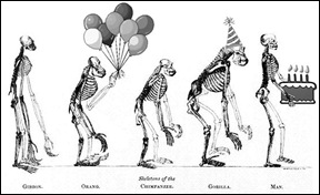 happy birthday darwin