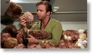 Tribbles – really eat the room together