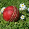 The Big Lebowski and Cricket