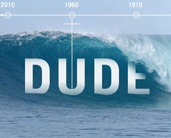 the history of dude
